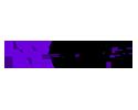 XENON WEKA logo